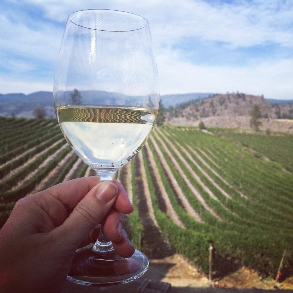riesling wild goose vineyards