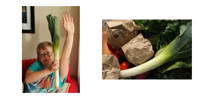 organivores produce