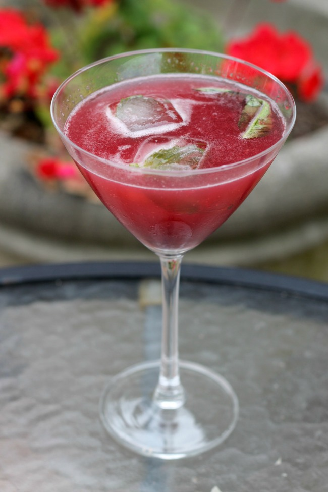 Cherry Slice Vodka Cocktail Recipe — Dishmaps