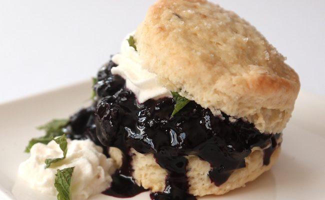 Blueberry Shortcake {Vegan}