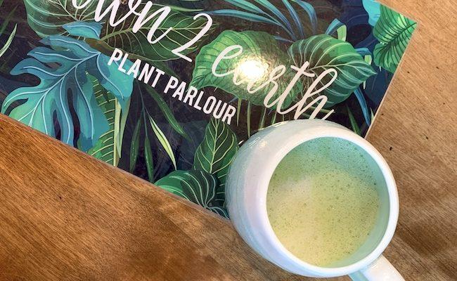 Down 2 Earth Plant Parlour